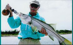 Tarpon Springs Flats Snook