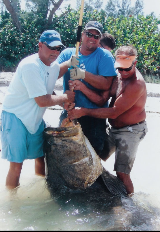 Florida fishing seasons reel adventures fishing charters for Florida fishing seasons