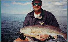 Shallow Water Redfish on Fly