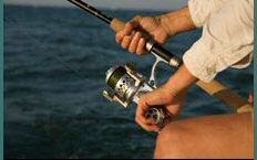 Awesome Accurate® Spinning Reel
